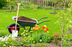 Gardeners Dumfries and Galloway - Gardening Services